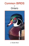 Common Birds of Ontario