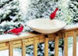 "20"" Heated Bird Bath Dish"